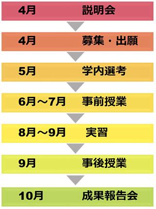 「全学共通型プログラム」の年間スケジュール図